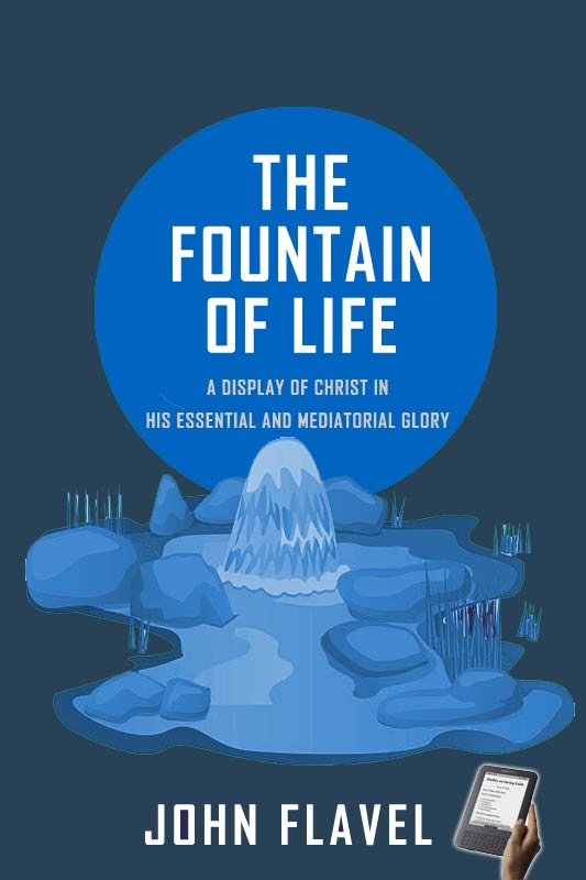 The Fountain of Life (eBook) | Monergism