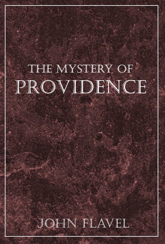 The Providence Of Fire Ebook